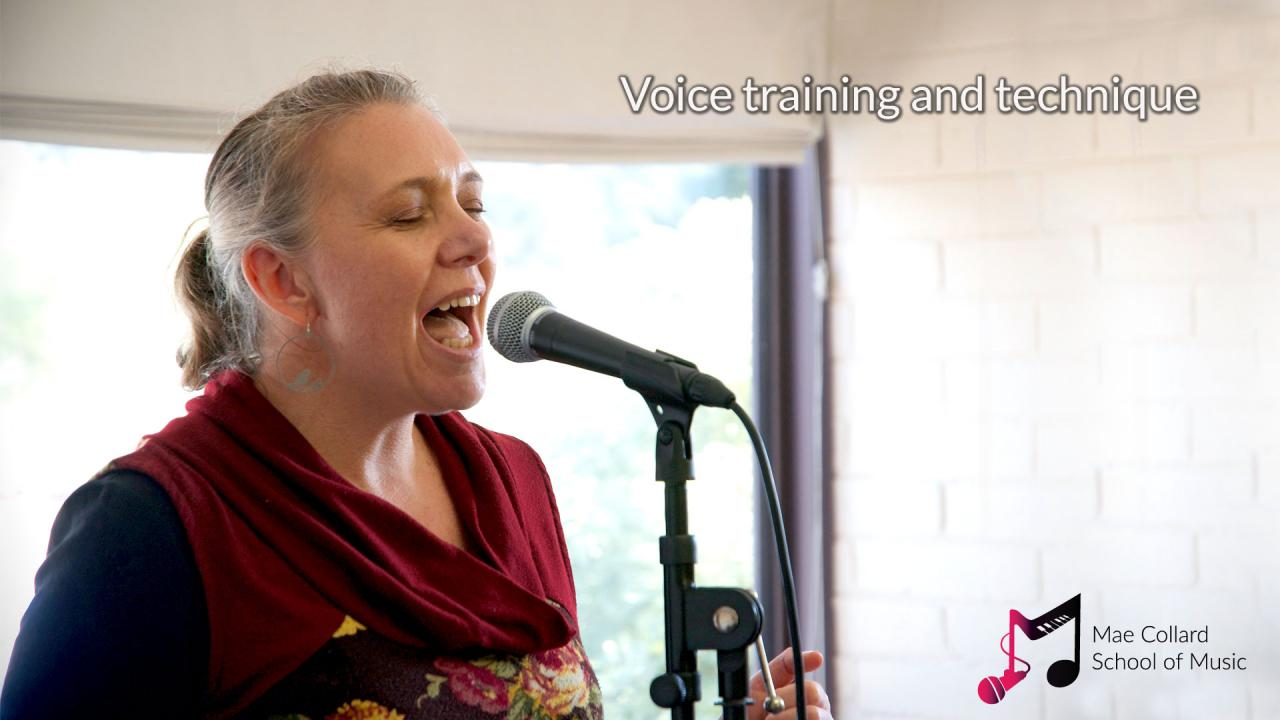 Woman singing into microphone - Voice training and technique